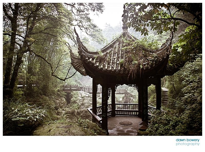 china fine art photographer pagoda