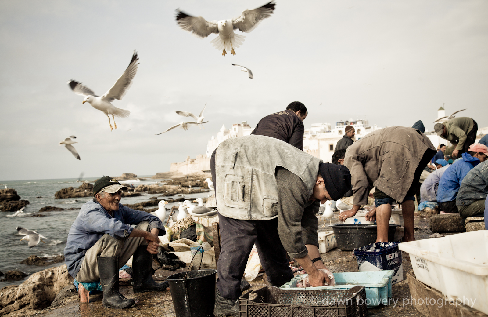 essaouira fisherman photograph